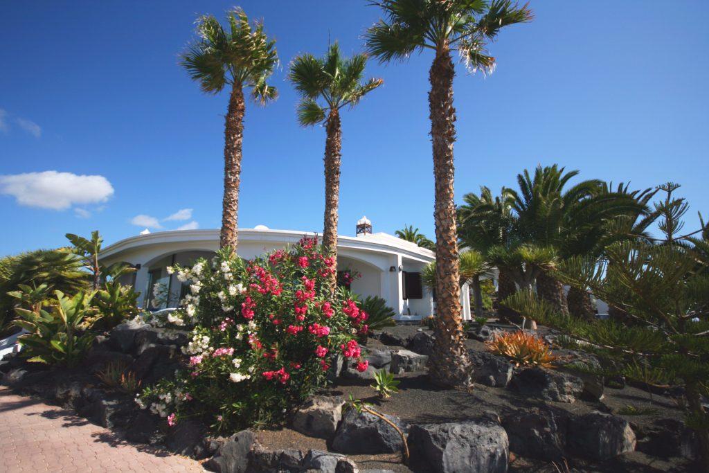 Casa Ronda 2 umsäumt von prächtigen Fächerpalmen.